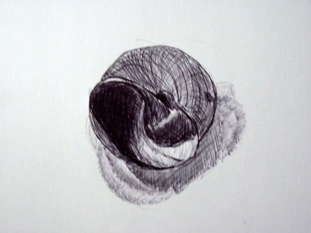Dessins : Etude sur l'objet (4/4)