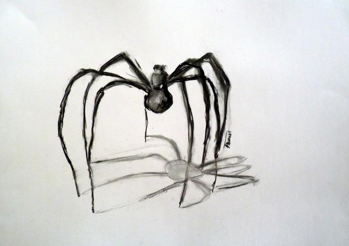 Araignée encre et craie